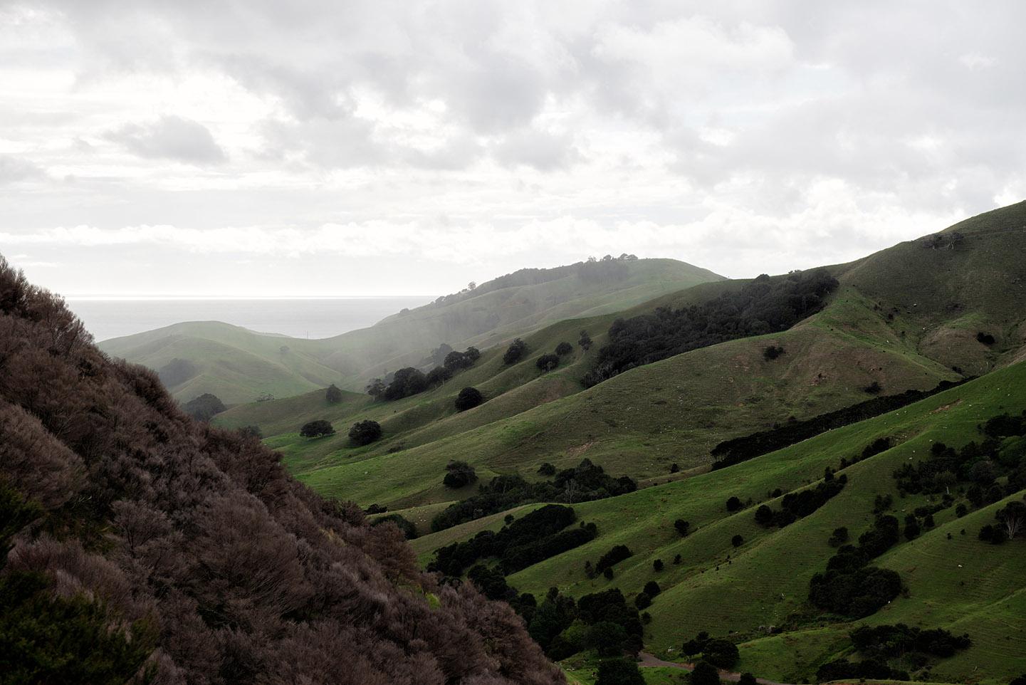 NZ_landschaft_filter_V2_web_3268